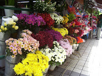 Cari Toko Bunga? Inilah 9 Toko Bunga Terbaik di Jakarta Yang Wajib Kamu Catat