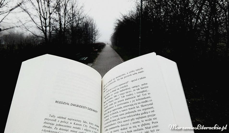 Alex Kava, W ułamku sekundy, Recenzja, Marzenie Literackie