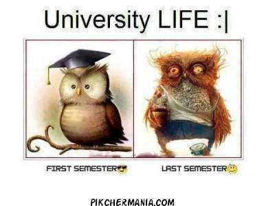 how students look in University Life in first semester and in last semester