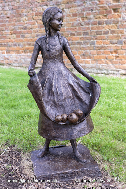 A bronze resin, almost life size sculpture of a little girl gathering apples in her apron.
