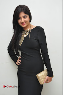 Actress Poonam Kaur Latest Pictures in Black Long Dress at Thikka Audio Launch  0030.JPG