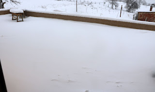 Another nice collection of snow