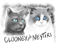 WANT A CATICATURE? CLICK HERE FOR CLOONEY'S PURRSONAL ARTISTE!