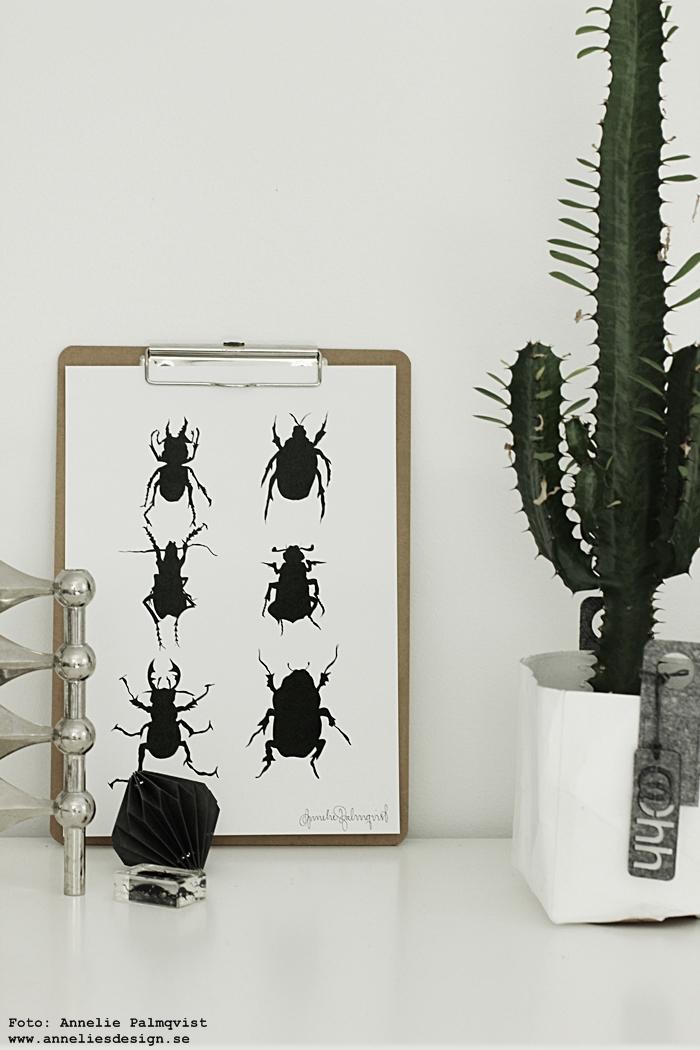 skalbagge, skalbaggar, konsttryck, tavla, tavlor, poster, posters, print, prints, annelies design, svart och vitt, svartvit, svartvita, webbutik, webbutiker, webshop, inredning, ljusstake, ljusstakar, påbyggnadsbara, moduler, kaktus, oohh krukor, kruka, diamant, diamanter, insekt, insekter, grafiskt, grafisk, grafiska,