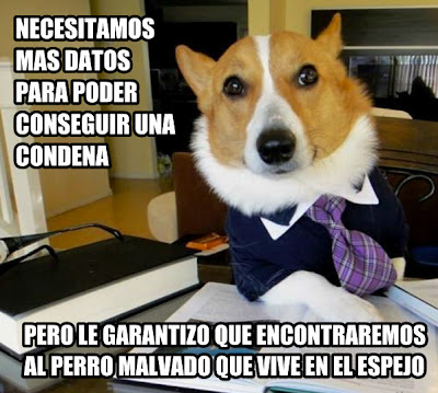 Perro abogado