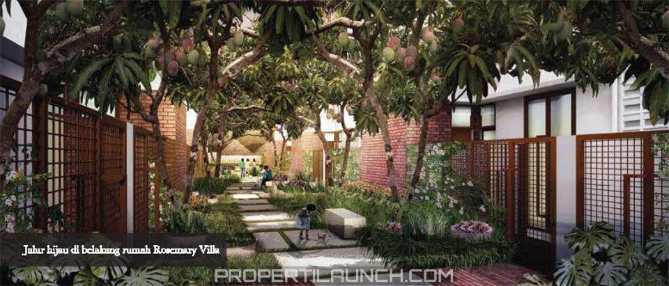 Halaman Belakang Rumah Rosemary Cluster Botanica Vida Bekasi