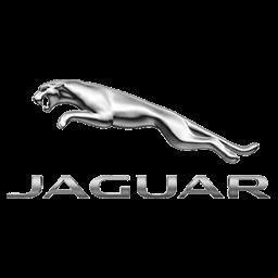 jaguar f1 logo