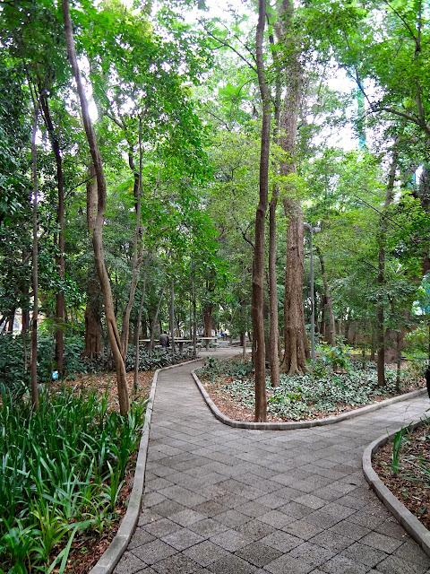 DSC00114 - Série Avenida Paulista: a Villa Fortunata e o parque. Como é o nome mesmo?
