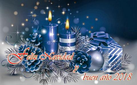 Bodegón navidad