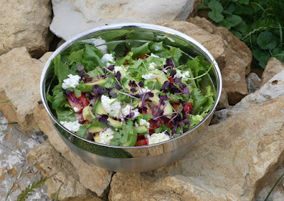 Eis-Tomaten-Avocado-Koriander-Salat mit Hüttenkäse