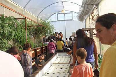Orgânico, saudável e econômico na Ilha Comprida