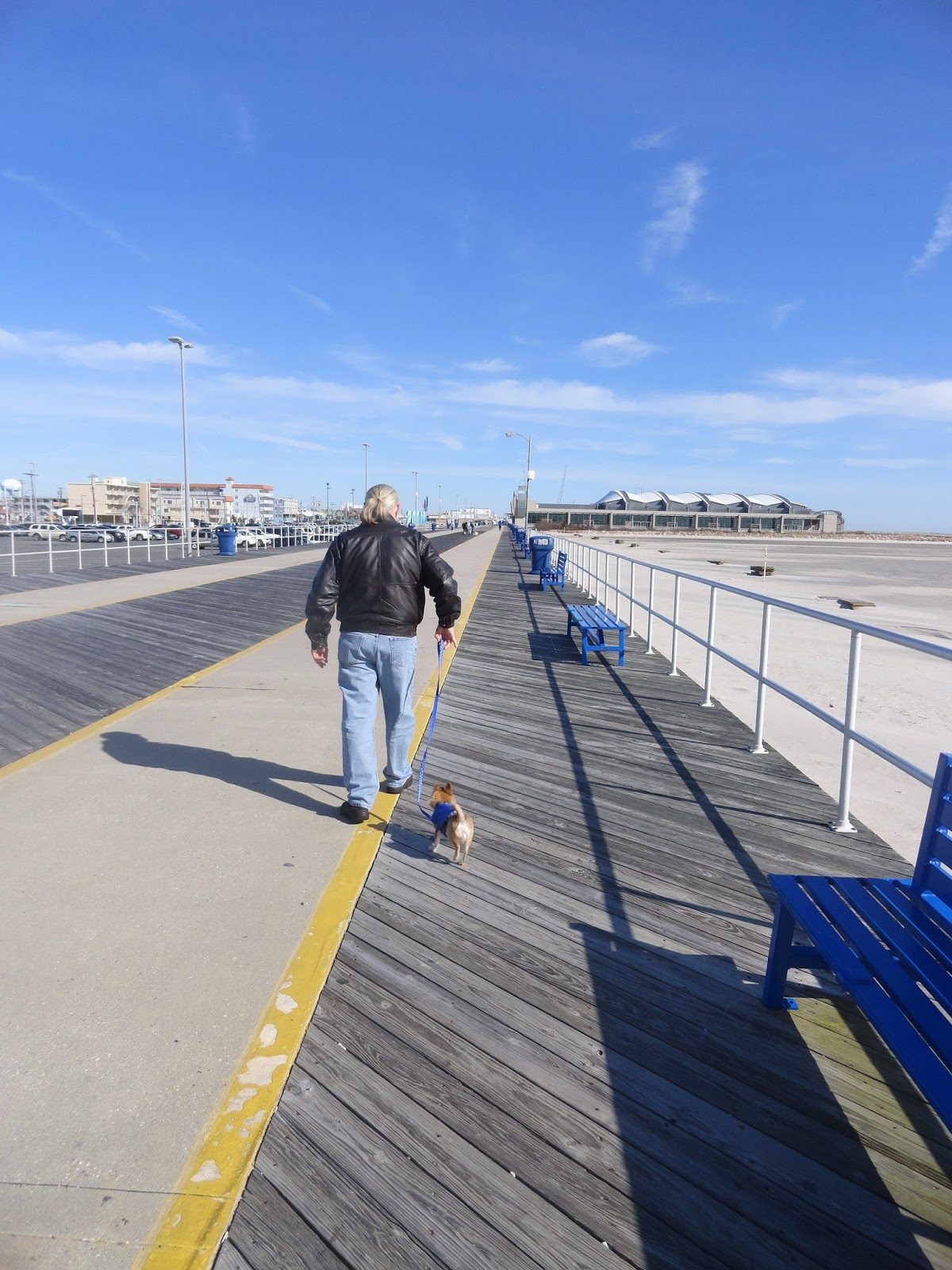 Wildwood weather mornin its 39 in wildwood nj breezes are very light out of the n nw at 4 6mph it feels like were getting some peeks of winter rather than those nvjuhfo Choice Image