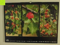 August: Laurent Pinsard 2016 - Triplets Posterkalender Naturkalender quer - 64 x 48 cm