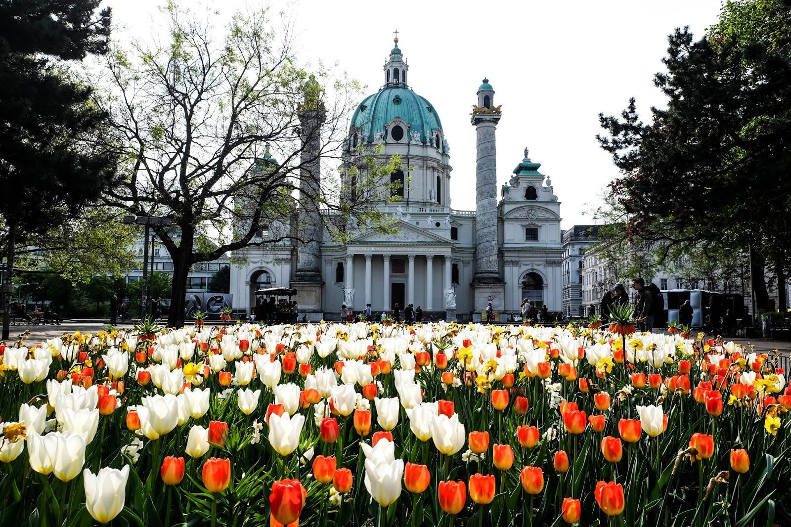 Vienna Travel Guide | Sammy Huynn