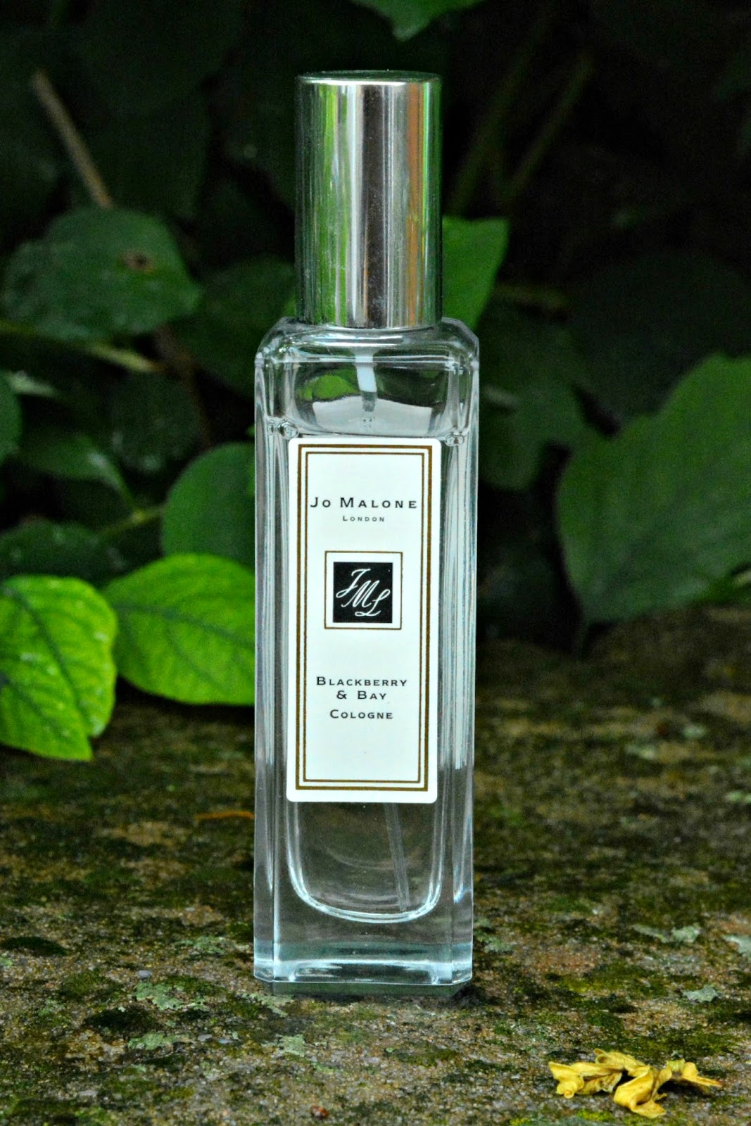 Jo Malone Blackberry and Bay Perfume