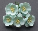 http://www.stonogi.pl/kwiatki-papierowe-pastel-green-mulberry-paper-cherry-blossoms-saa066-p-18981.html
