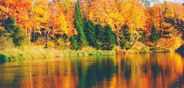 Harvest Moon – Ushering in Autumn