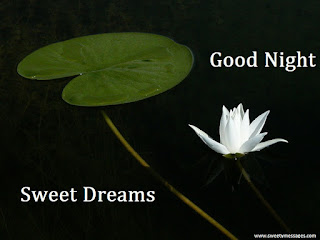 good night, good night graphics, good night images, good night photos, good night pics, good night picture for facebook, good night pictures, good night quotes, good night wallpapers,