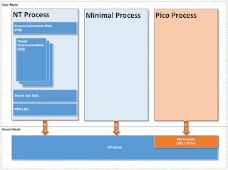 NT Process, Minimal Process, Pico Proess