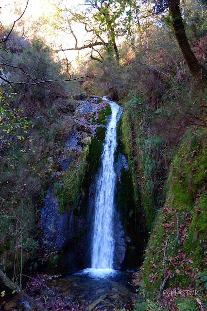 Cascada Celón - Los Oscos - Asturias