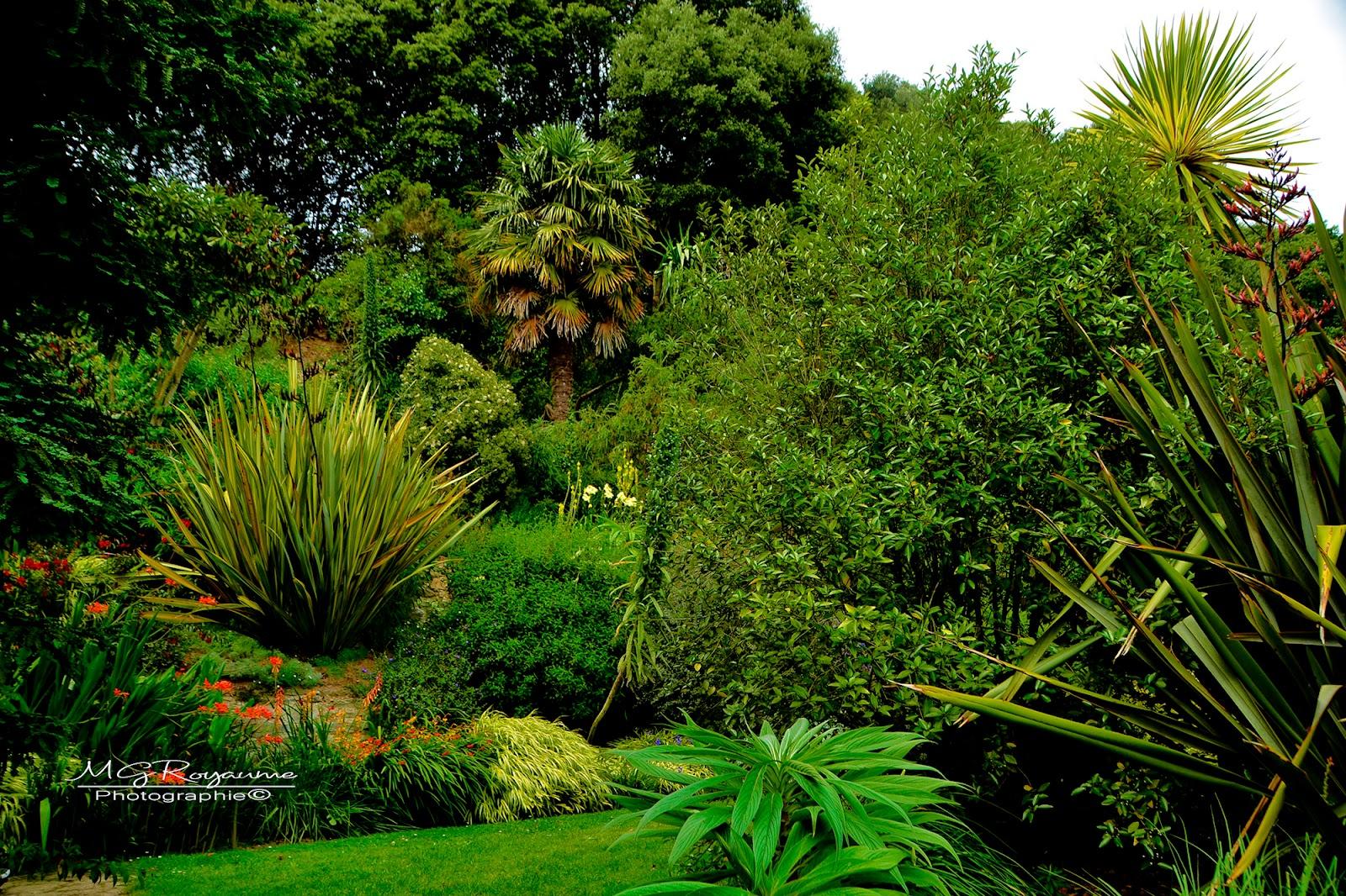 Mg Royaume Photos Le Jardin D Eden Kerdalo Dans Les Cotes D