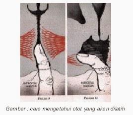 Cara Membuat Vagina Sempit Dan Kuat Cengkeramannya