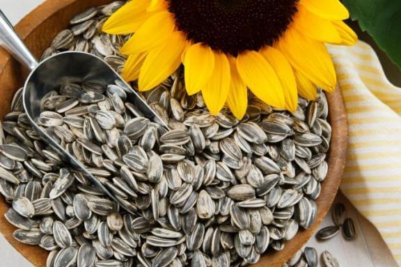 kuaci dan benih labu untuk kencing manis