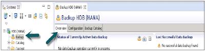 SAP HANA Backup & Recovery