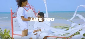 Download Video | Snopa BigSome - Like You
