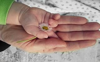 Bimbo con fiore