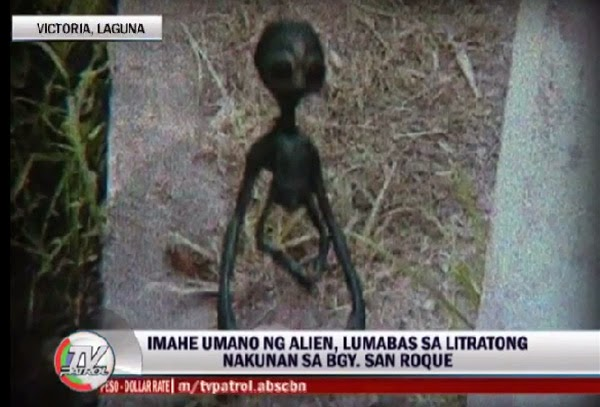 Image result for alien real or not