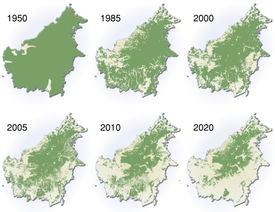 Amazon Rainforest Deforestation Map About-deforestation-map jpgAmazon Rainforest Map Deforestation