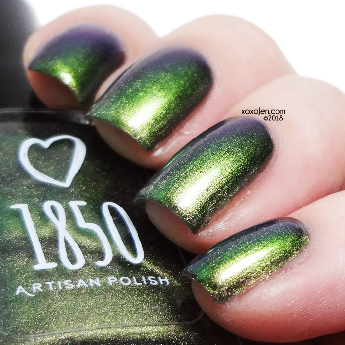 xoxoJen's swatch of 1850 Sea Anemone