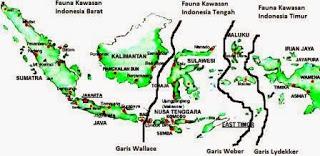 Flora dan Fauna merupakan salah satu kekayaan alam di indonesia Penyebaran Fauna di Indonesia Lengkap Dengan Penjelasan