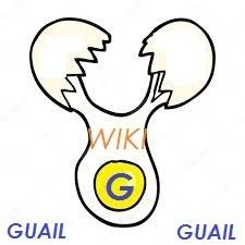 Wiki-g