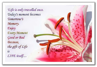 beautiful quotes on life:life is only traveled once. today's moment becomes tomorrow's memory.