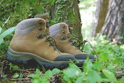 7 Jenis Sepatu Gunung Terbaik Berdasarkan Trek Pendakian Beserta Kegunaannya