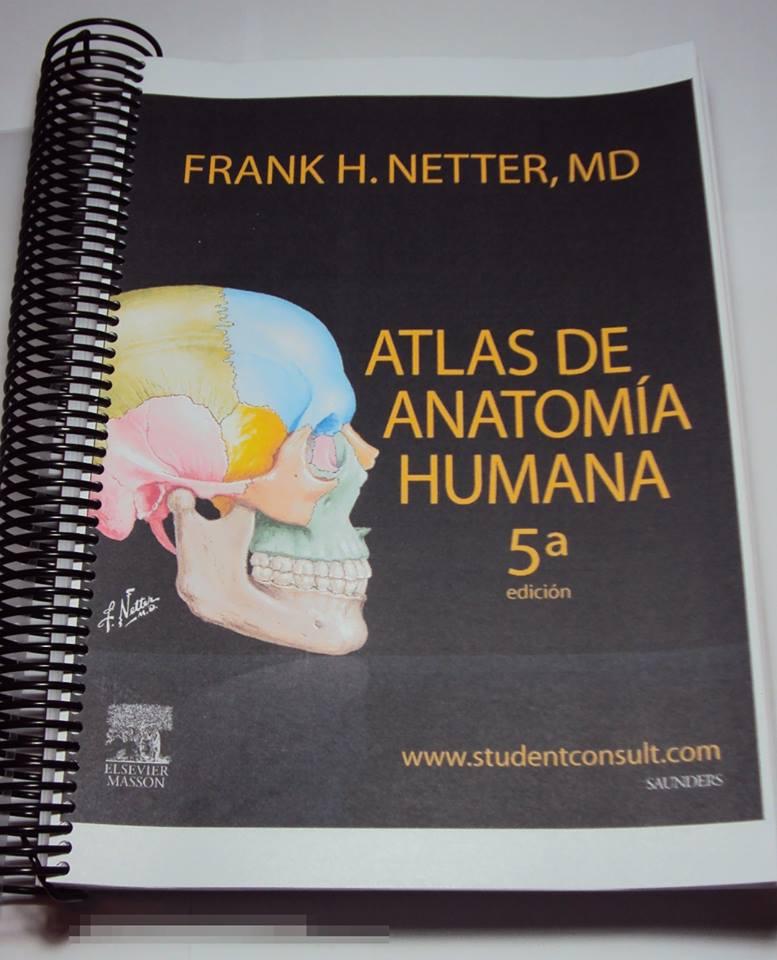 Encantador Descarga Gratuita Anatomía Y Fisiología Humana Marieb Pdf ...