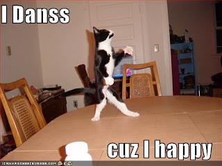 pisica fericita