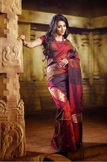 Trisha Krishan in Saree Images for advertisement