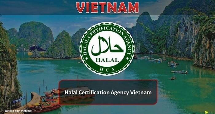 Logo Halal Vietnam