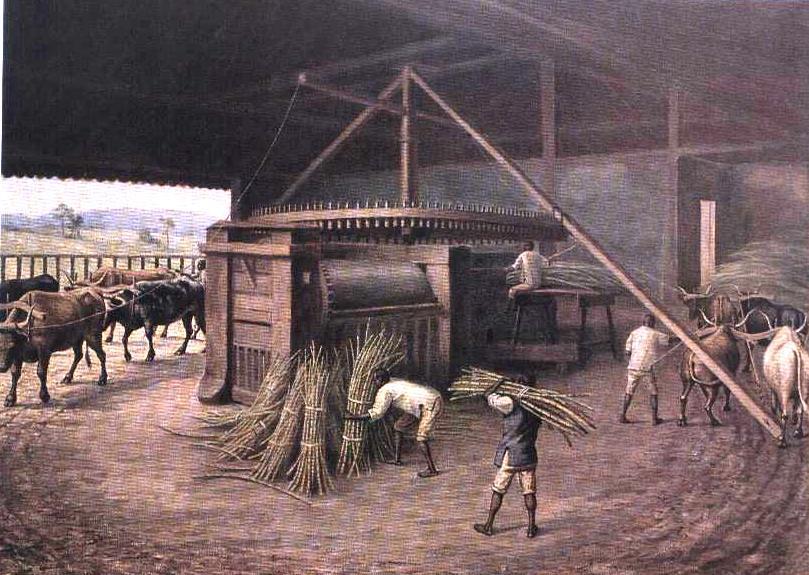 Vozes do Verbo: Agropecuária no Brasil e no Mundo: Origem ...
