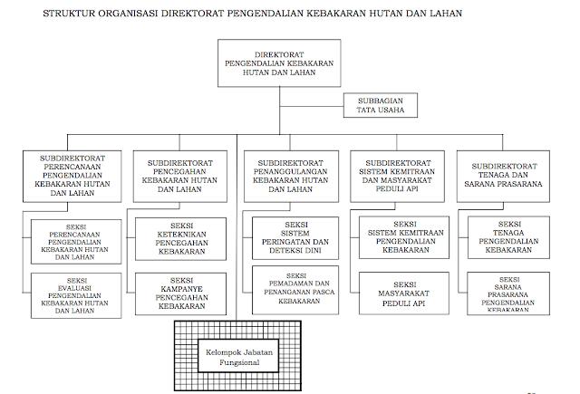 STRUKTUR ORGANISASI DIREKTORAT PENGENDALIAN KEBAKARAN HUTAN DAN LAHAN
