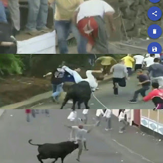 When the uncontrollable bull fell, look after a girl full video