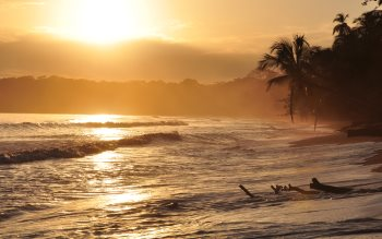 Wallpaper: Golden sunrise in Cahuita