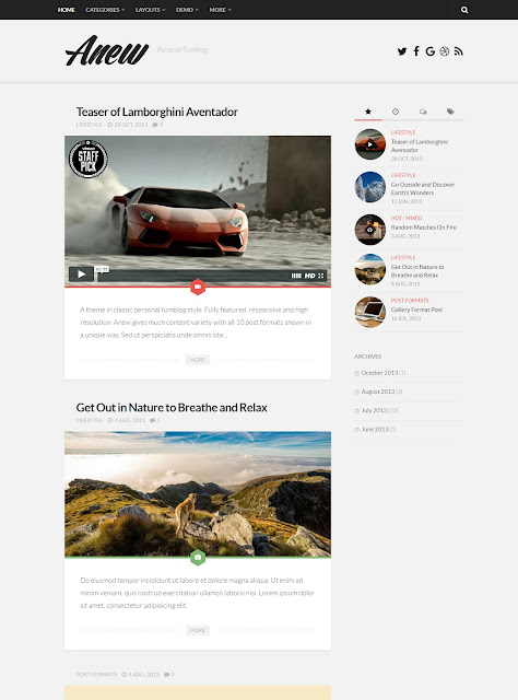 Anew - Responsive WordPress Tumblog Theme