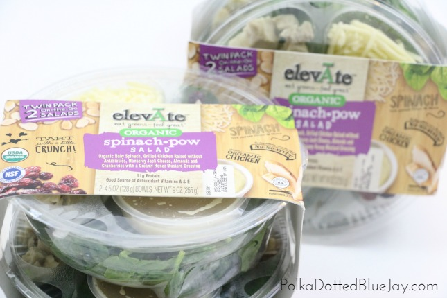 Life is busy and stressful, but packing a lunch doesn't have to be with #ElevateSalads! Click here for other ways to save time every day. #ad
