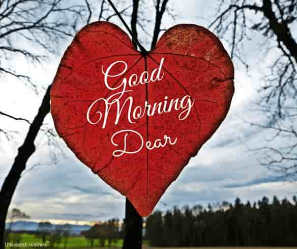 good morning dear jaan