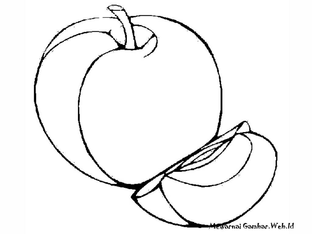 Mewarnai Gambar Pohon Apel Q Warna