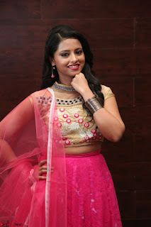 Geethanjali sizzles in Pink at Mixture Potlam Movie Audio Launch 023.JPG